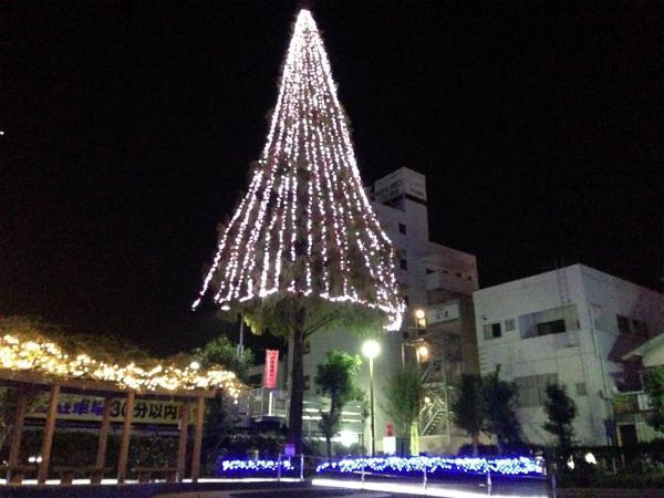大牟田駅前のライトアップ(メタセコイヤの木)