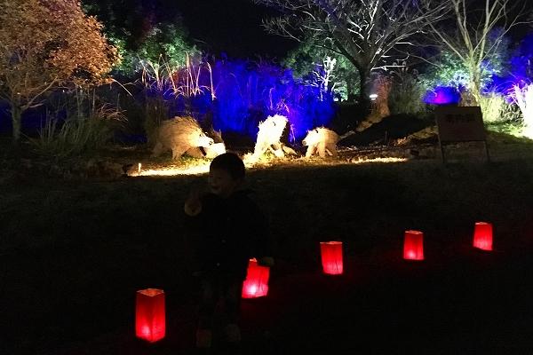 吉野ヶ里歴史公園ライトアップ-03