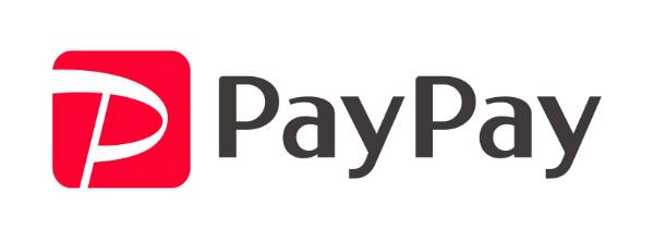 spaypay_1_rgb(JPEG)